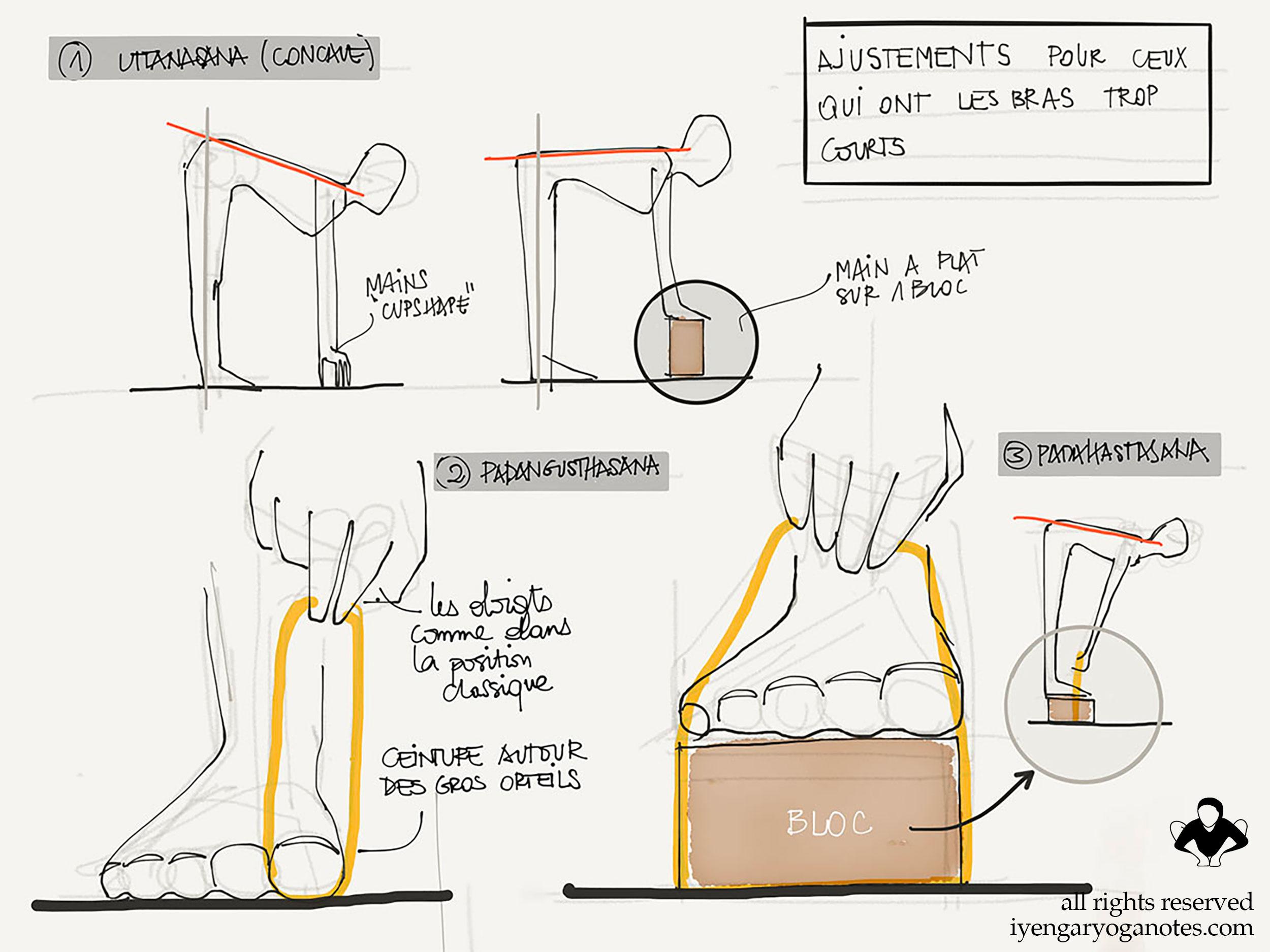 yoga Iyengar - Utilisation des suppports